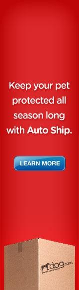 Auto Ship