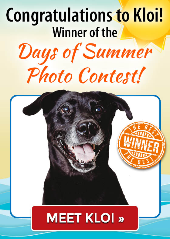 Congratulations Kloi! Winner of the Days of Summer Photo Contest!