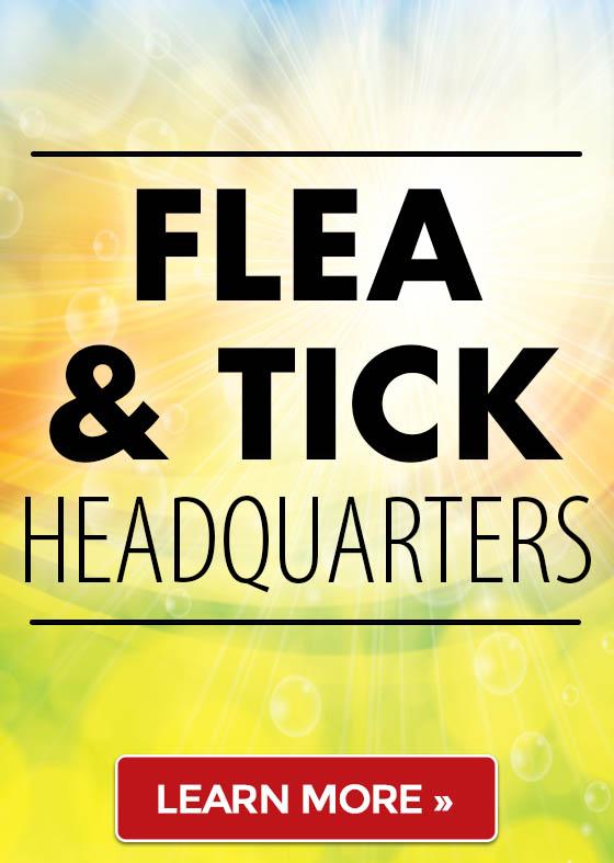 Flea & Tick Headquarters