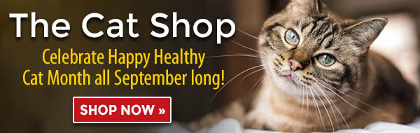 The Cat Shop - Celebrate Happy Healthy Cat Month all September long!