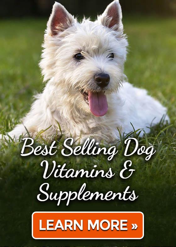 Best Selling Dog Vitamins & Supplements