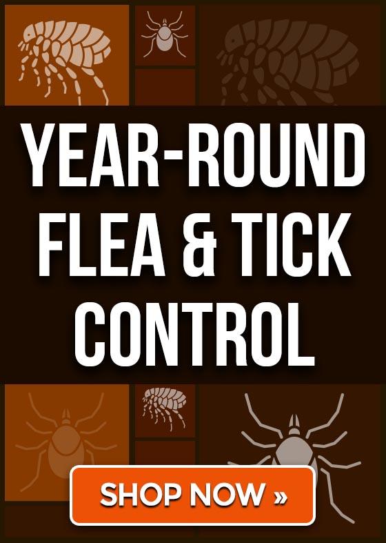Year-Round Flea & Tick Control