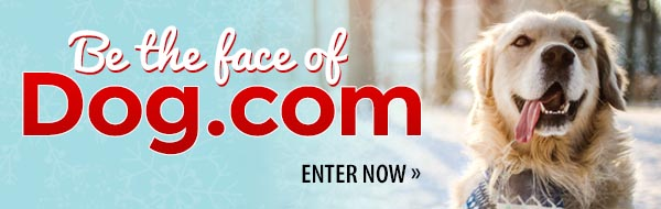 Be the face of Dog.com! Enter Now »