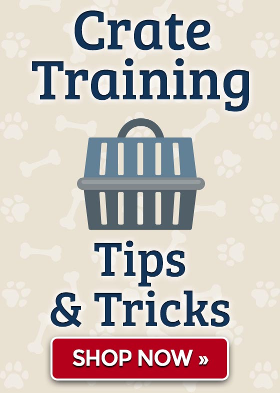 Crate Training Tips & Tricks