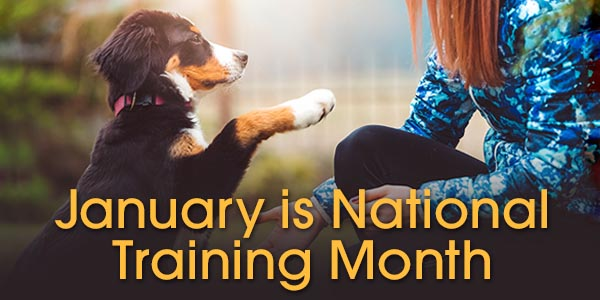 January is National Training Month! 25% Off | Free Shipping over $69 | 30% Off Orders over $99*