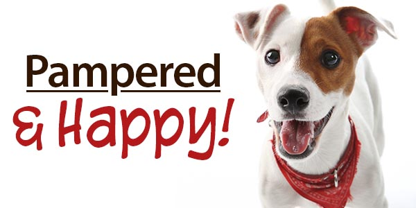 Pampered & Happy! 25% Off   Free Shipping over $69   30% Off Orders over $99*