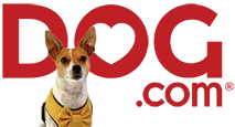 Dog.com The best local source for all of your dog supply needs and unbeatable doggy deals