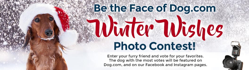 Be the Face of Dog.com Winter Wishes  Photo Contest Landing Page!