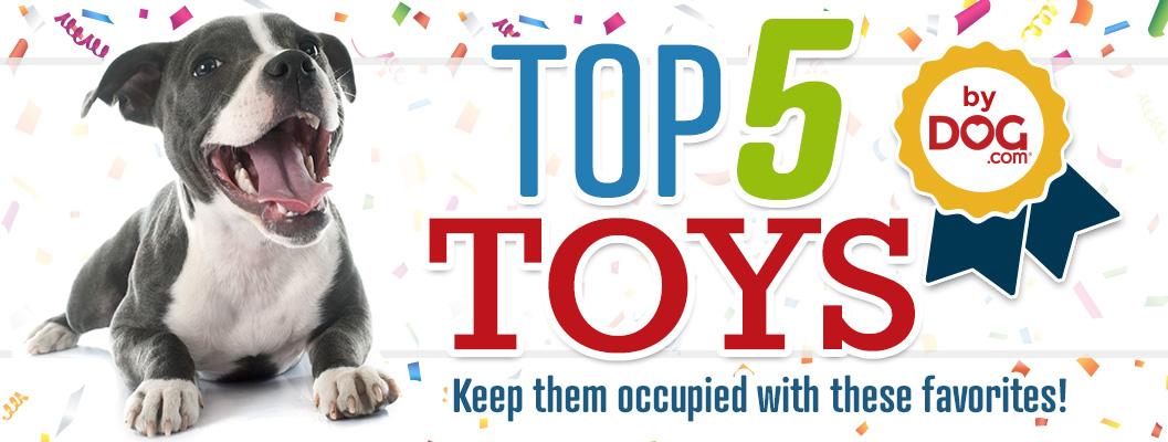 Top 5 Dog.com Toys