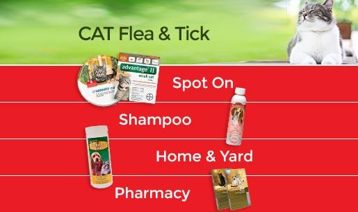 Cat Flea & Tick