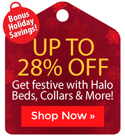 Halo Beds, Collars & More