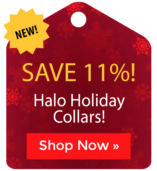 Halo Holiday Collars