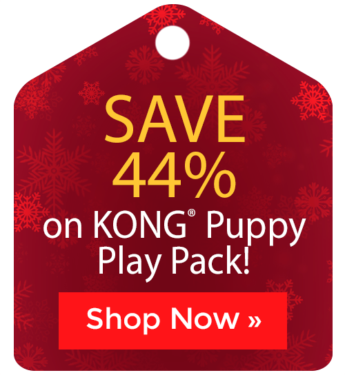 KONG® Puppy Play Pack