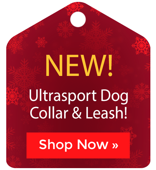 Ultrasport Dog Collar & Leashes