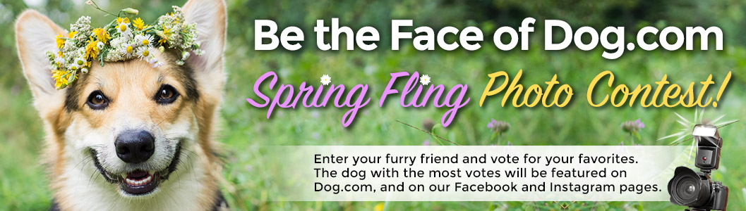Be the Face of Dog.com Photo Contest!