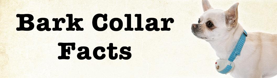 Bark Collar Facts