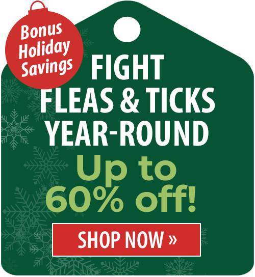 Up to 60% off!