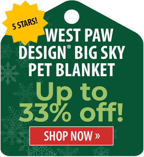 Up to 33% off!