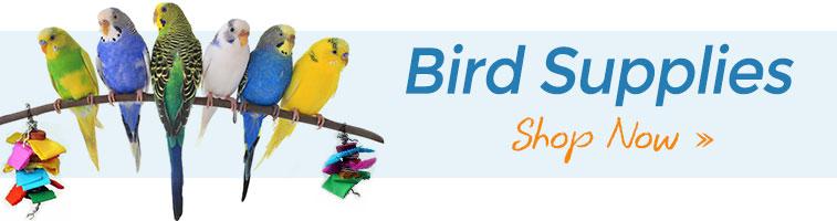 Shop Bird Supplies