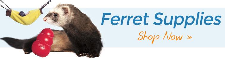 Shop Ferret Supplies