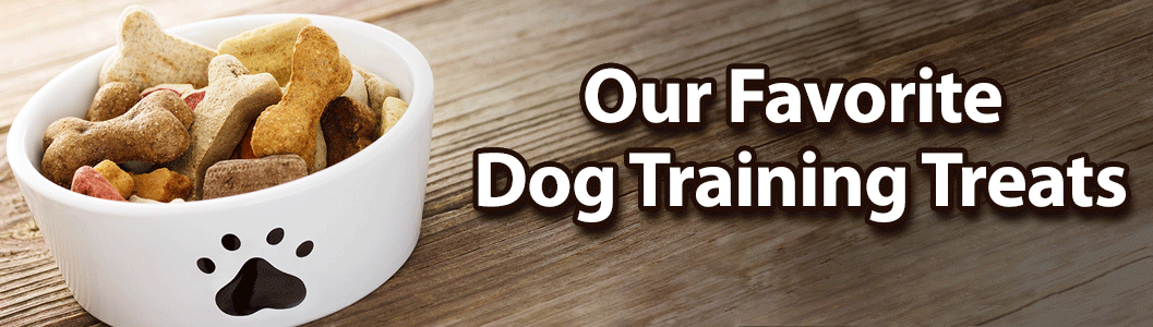 Our Favorite Dog Training Treats