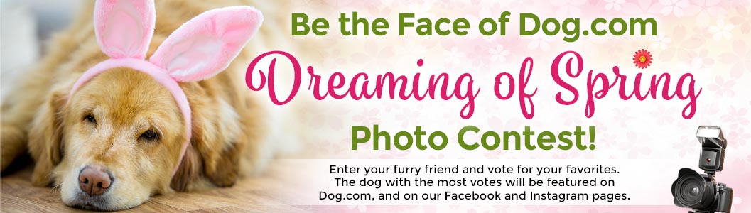 Be the Face of Dog.com Dreaming of Spring Photo Contest!