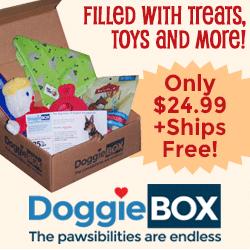 Buy a DoggieBox Today!