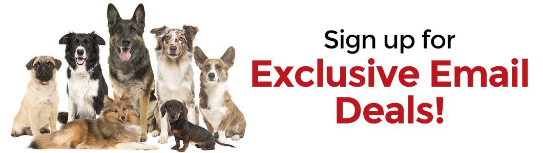 Dog.com Email Sign Up!