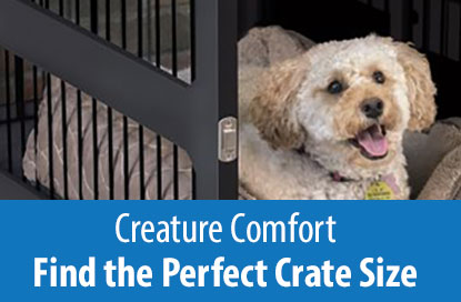 Creature Comfort - Find the Perfect Crate Size