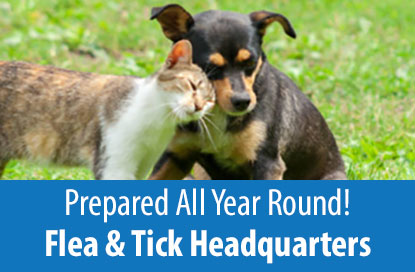 Prepared All Year Round - Flea & Tick Headquarters