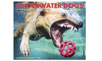 2015 Underwater Dogs Calendar