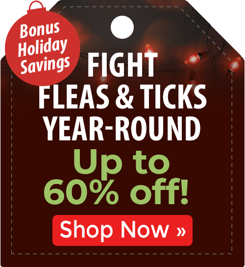 Fight Fleas & Ticks Year-Round