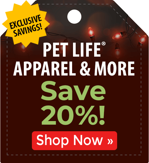 Stylish finds from PetLife